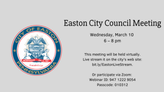 Easton City Council Committee Meeting (virtual)